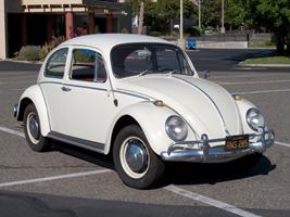 volkswagen bug -